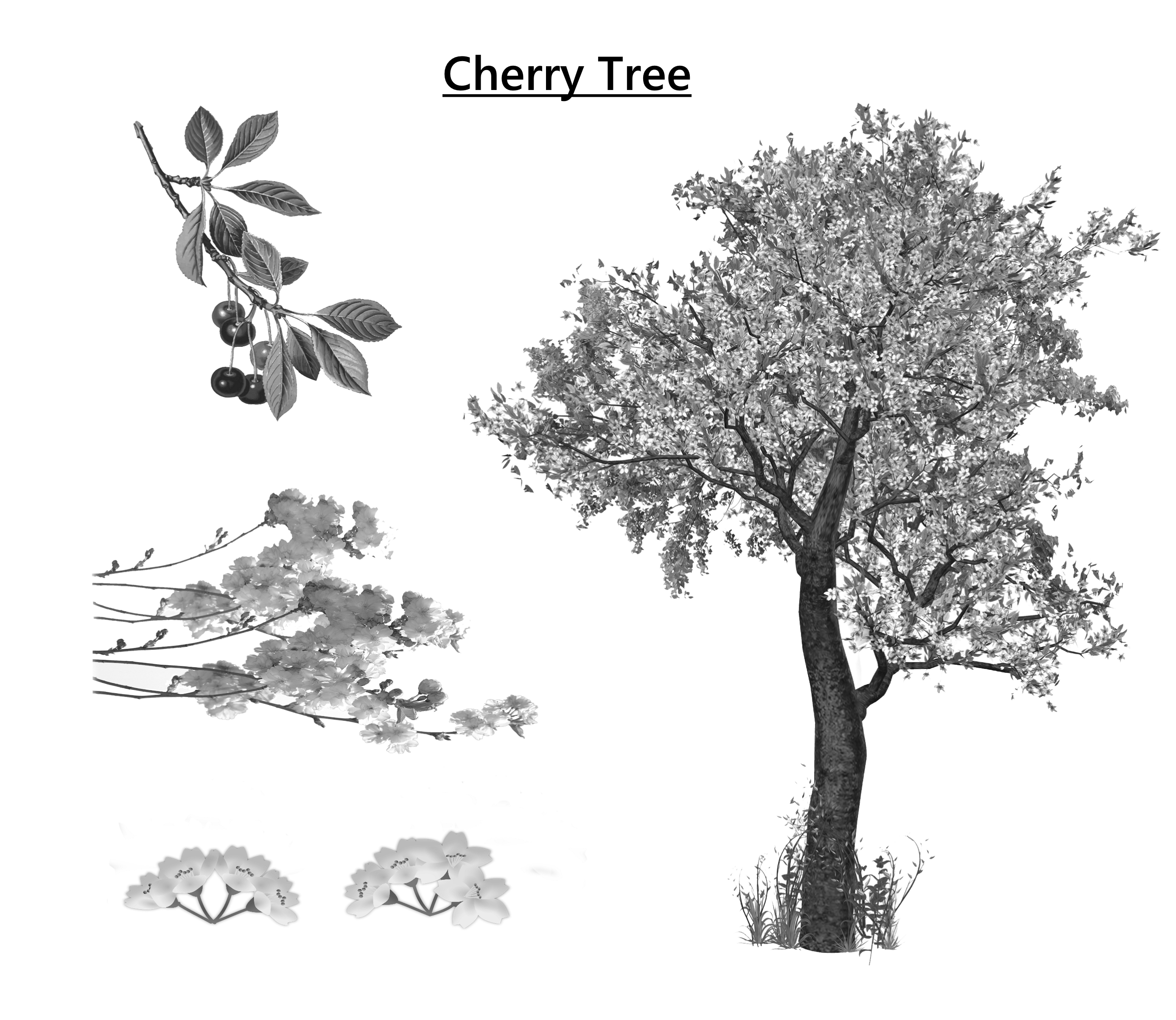 treecherrytree
