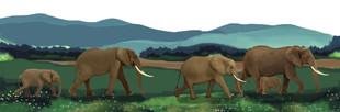 elephantscape-8.50x11spreadpage1and2.jpg