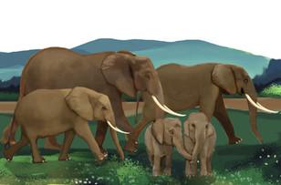 elephantscape-page3.jpg