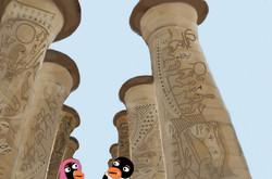 0oegypt-jhndonepg11dnf mz