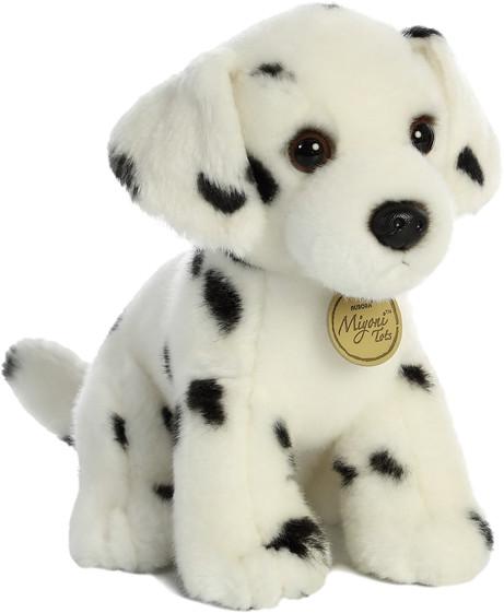 Dalmatian Pup