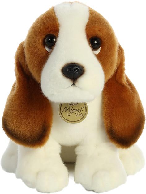 Basset Hound Pup