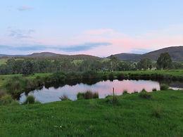 Grant's pond - Lynette (2).JPG