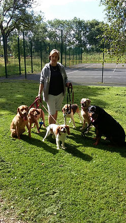 IMG-20160812 me and group of dogs.jpg