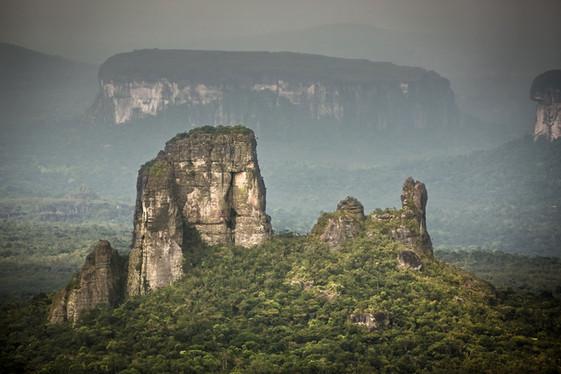 Protecting the Amazon