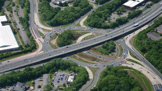 FCP underpins plan for more trees next to England's roads