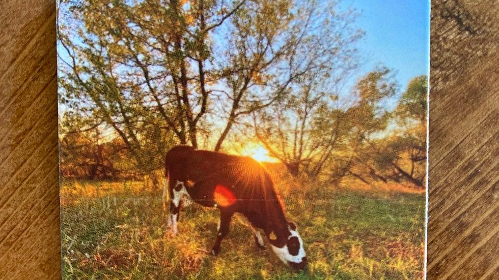 Gertie the Cow Grazing Magnet