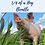Thumbnail: 1/4 of a Hog Bundle