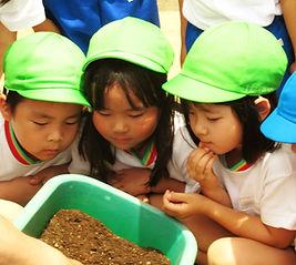 真剣に学ぶ園児たち