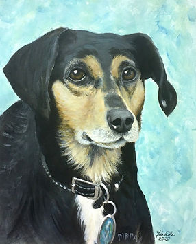 20 Coonhound - Pippa.jpg