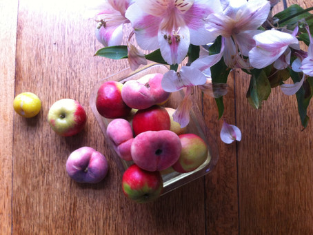 Autumn Deliciousness from The Woodland Orchards