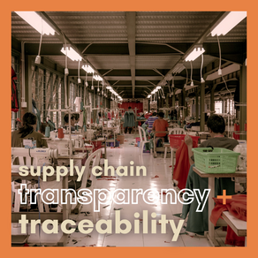 Supply Chain Transparency & Traceability
