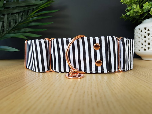 White stripes martingale dog collar