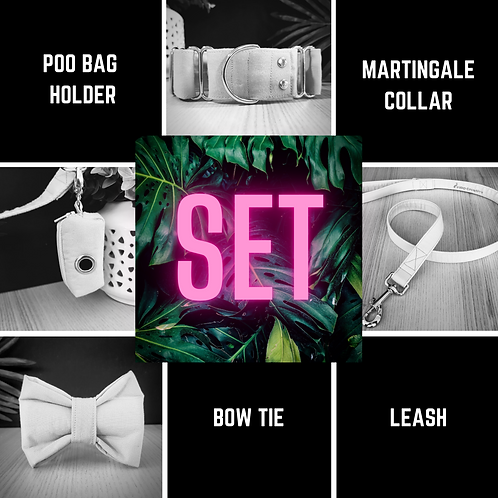 Martingale dog collar, leash, bow tie and poo bag holder set, combo