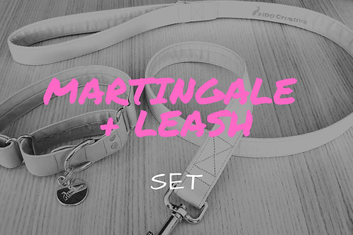 Martingale dog collar and leash set, combo