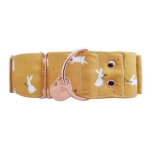 Mustard bunny martingale dog collar