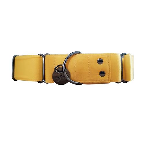 Sunshine yellow martingale collar