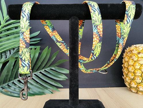 Pineapple dog Leash, lead