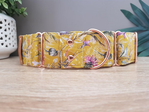 Mustard native gum blossom, martingale dog collar