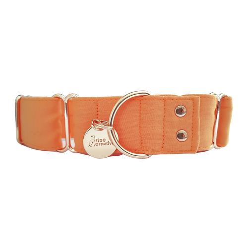 Orange martingale dog collar