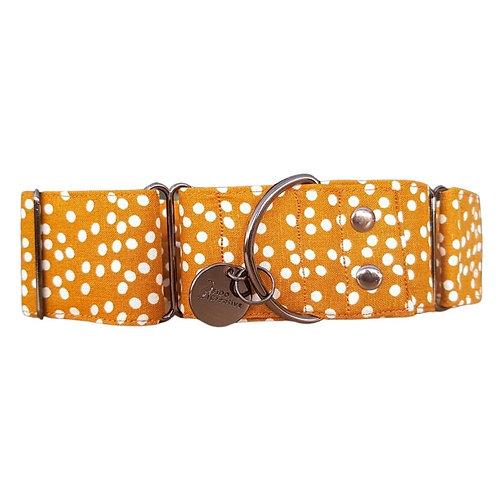 Gold Rush, dotty linen martingale dog collar