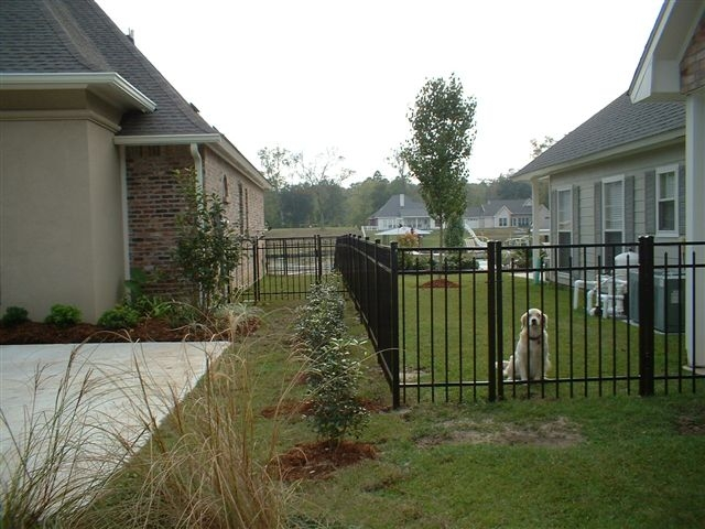 AMKO Fence Ornamental 5