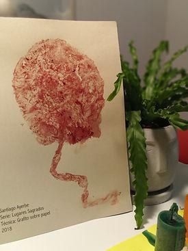 Medicina placentaria (3).jpg