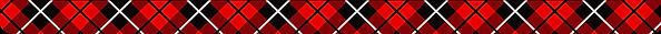 Polonesa%20125X38_edited.jpg