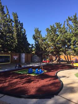 Toddler Yard (1).jpg