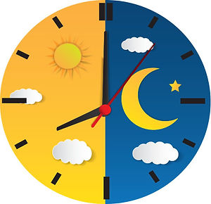 Newsletter201912_science of sleep_02_gra
