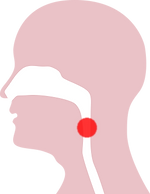 WYSDseo_snoring_17_graphic.png