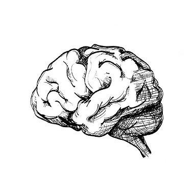 Newsletter201902_science of sleep_02_ima