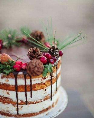 Winterkuchen.JPG