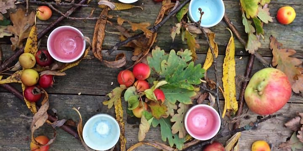 Autumn Forest Bathing Walk 3. Meaning