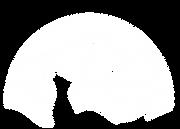 QWhite-logo.png