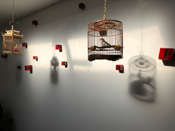 bird cage at Chojo