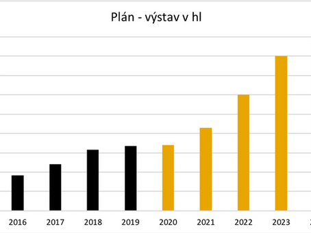 Business plan 2020 - 2024