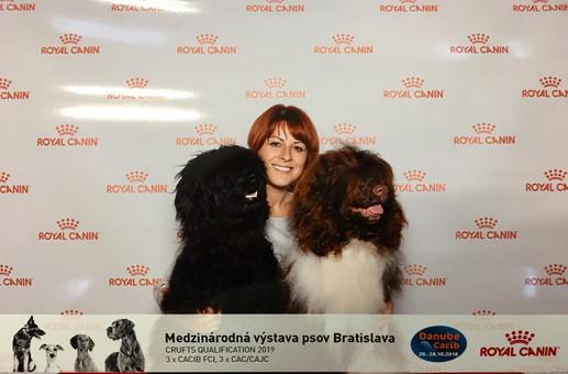 Matilda & Wendy - CACIB Bratislava
