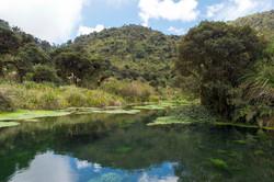 Puracé, Cauca