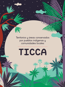 ¿Qué son los Ticca?