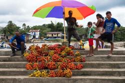 Timbiquí, Cauca