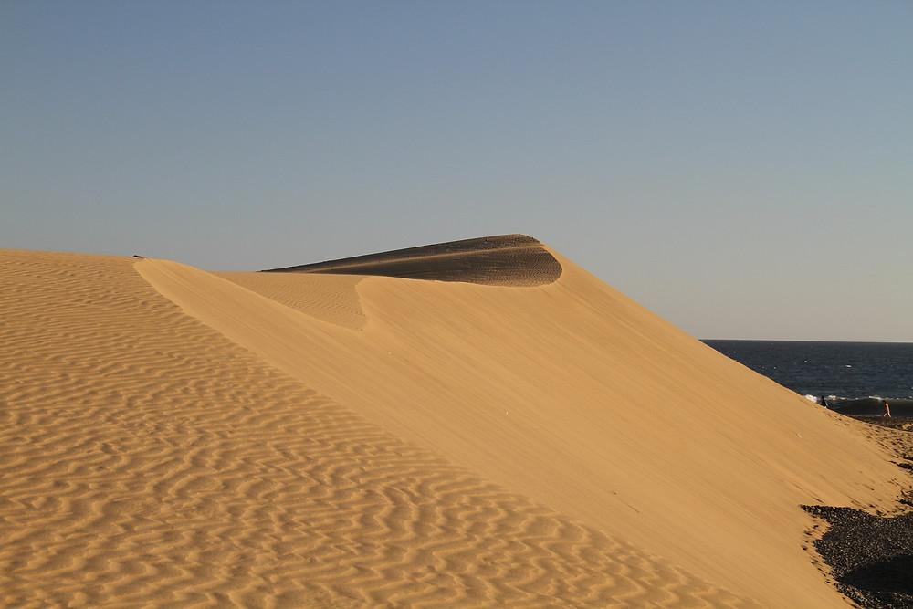 Die Sanddünen am Naturstrand von Maspalomas.