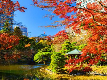 Die beste Reisezeit für Tokio