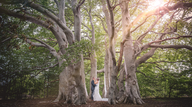 M + T - Wedding Day Photos-220.jpg