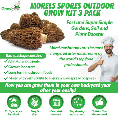 Morels Spores Outdoor Grow Kit 3 Pack – Fast and Super Simple