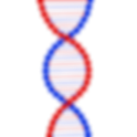 dna-2230030_1280.png