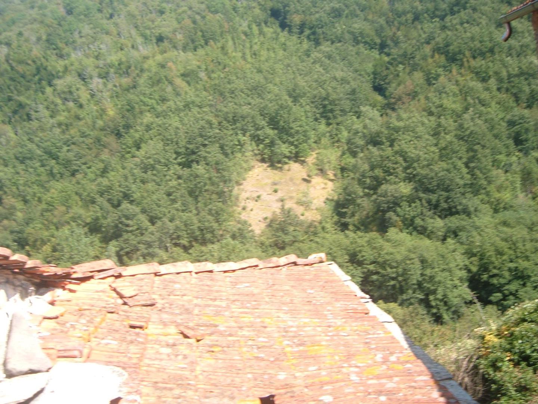 Sercognano4.jpg