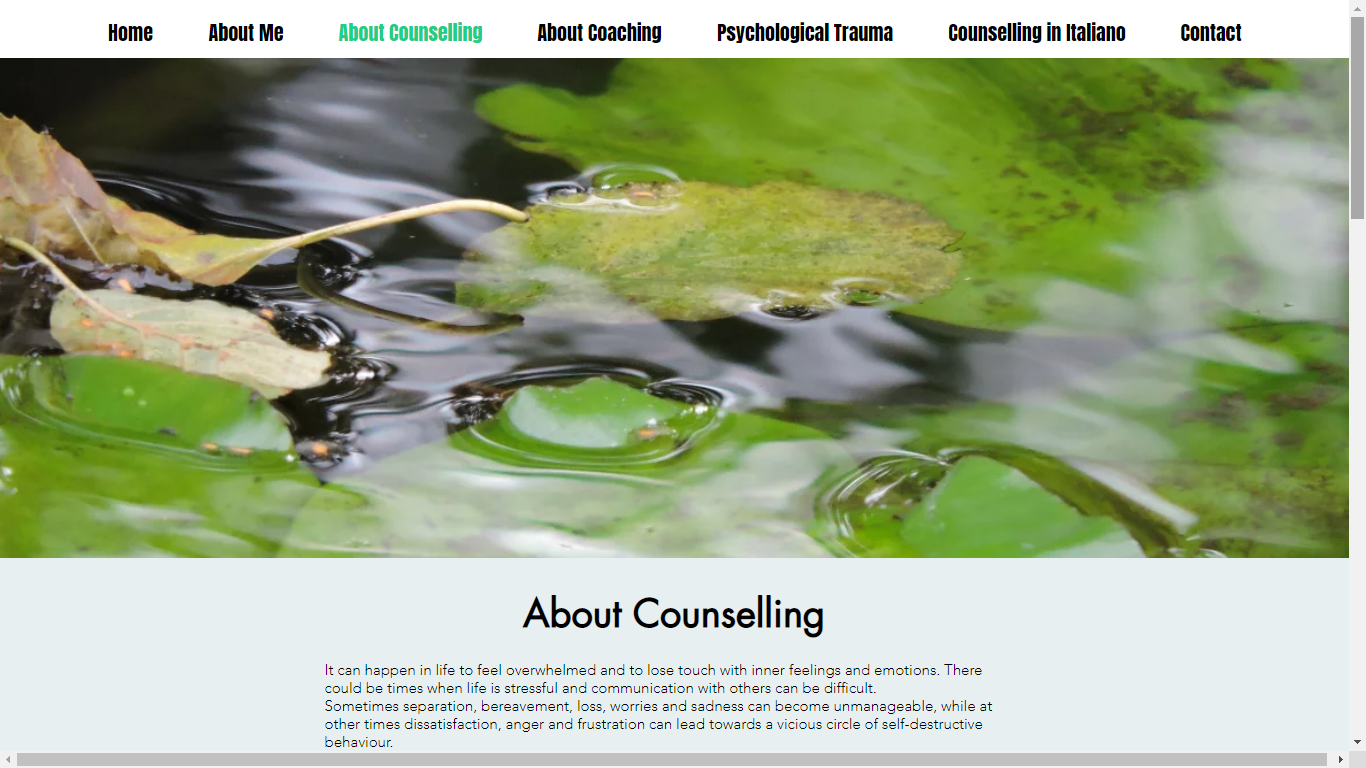 Counselling Here and Now Website About C