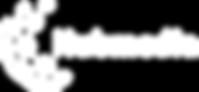 Logo_Hubmedia 8 1 wit.png