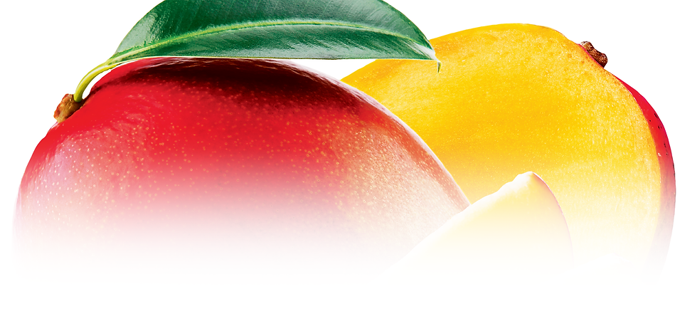 Products_Top Banner_Dried Mango.png